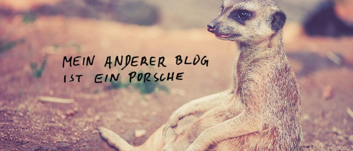Mein anderer Blog ist ein Porsche